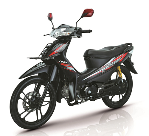 LIFAN Dirt-bike_PK110