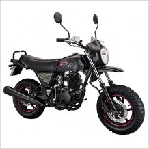 Lifan New Model Dirt Bike: Pony 100